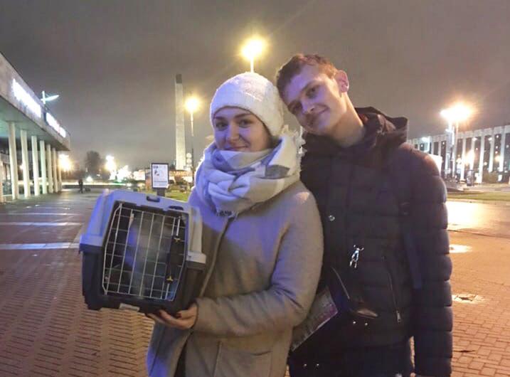 Надя и Никита взяли из приюта кота с трудной судьбой и характером