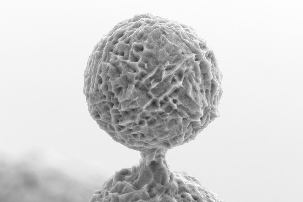 Ученые создали покрытия, которые помогут вживлять титановые импланты в кости