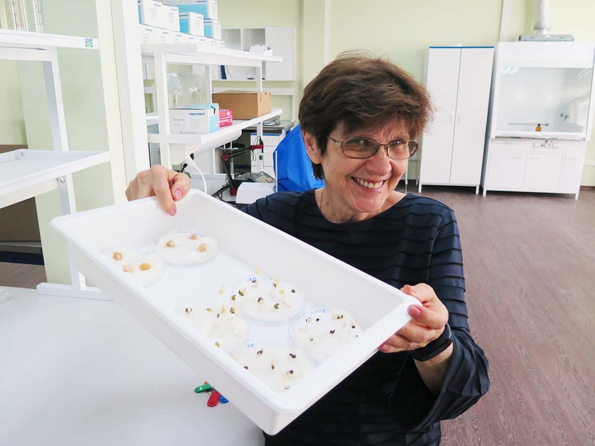 Мария Самсонова занимается исследованием геномов сельскохозяйственных культур