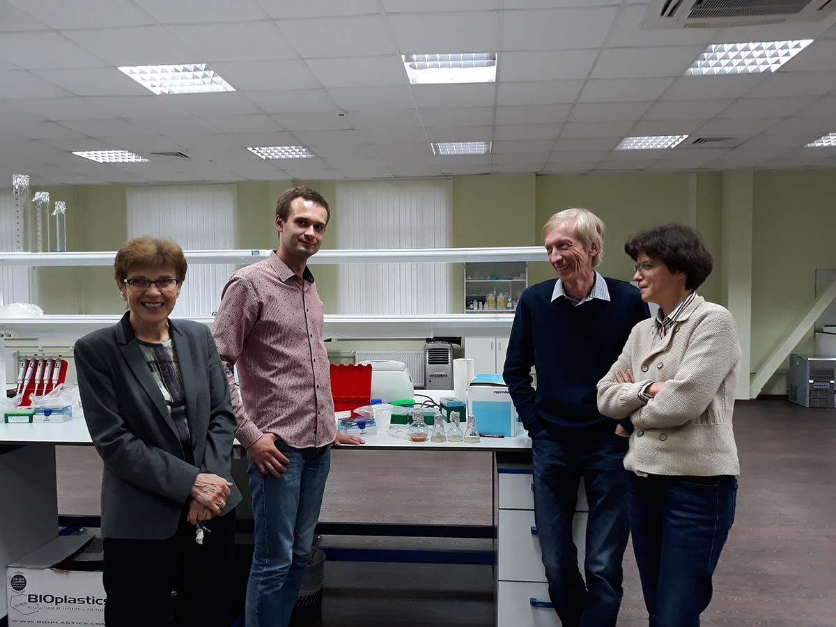 Научная группа создает математические модели, прогнозируя, когда произойдет включение генов